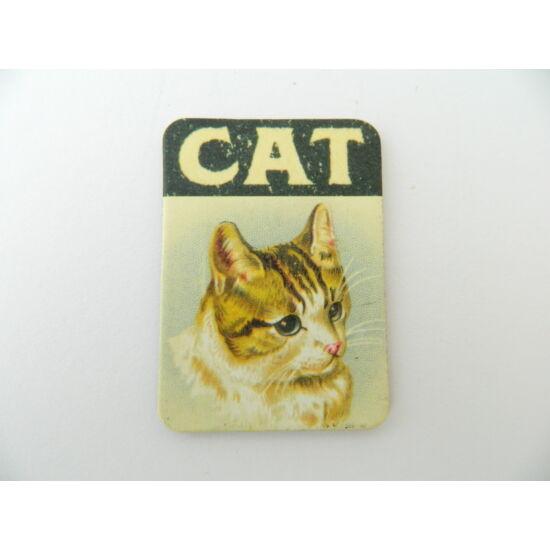 Cicás hűtőmágnes CAT
