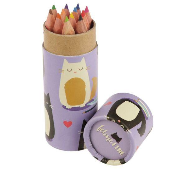 színes ceruzák cicás tartóban